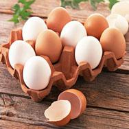 野生山鸡蛋 山里散养鸡